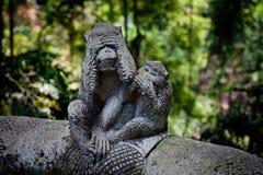 Steinzusammensetzung im Affe-Wald Lizenzfreies Stockfoto
