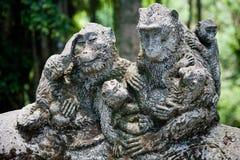 Steinzusammensetzung im Affe-Wald Stockfotos