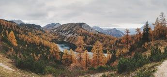 Steirersee sjö Arkivbilder