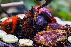 Stek i kiełbasa na BBQ Obraz Stock