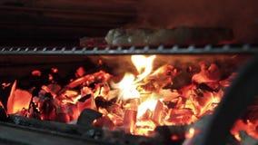 Stek Piec na grillu zbiory wideo