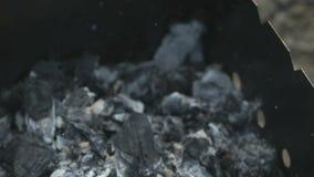 Steka av korvar på varma kol på gallret stock video