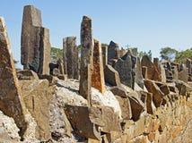 Stekelige Brug, Tasmanige, Australië royalty-vrije stock fotografie