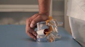Stekelmodel in artsenhanden stock videobeelden