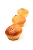 stekhet smaklig cakefrukt Royaltyfria Foton