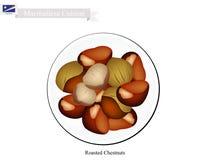 Stekheta kastanjer, den berömda maträtten av Marshall Islands royaltyfri illustrationer