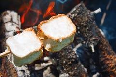 Stekheta marshmallower över en öppen lägereld royaltyfri bild