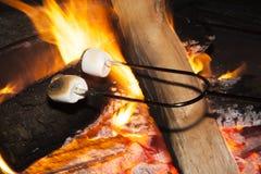 Stekheta marshmallower Fotografering för Bildbyråer
