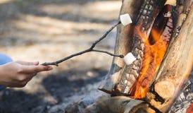 Stekheta marshmallower Royaltyfri Foto