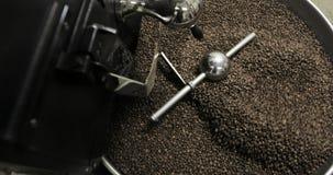 Stekhett virvla för kaffebönor som är blandat på att kyla enhetsplattformen i ett manufactoryseminarium stock video