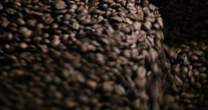 Stekhett virvla för kaffebönor som är blandat på att kyla enhetsplattformen i ett manufactoryseminarium, närbild lager videofilmer