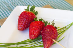 Steknål av jordgubbar Arkivfoton
