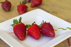 Steknål av jordgubbar Royaltyfri Fotografi