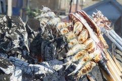 Steknålar av sardiner Arkivbilder