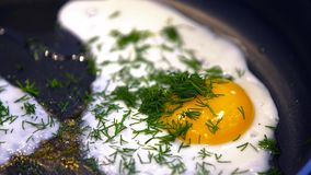 stekt ägg arkivfilmer