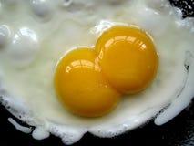 Yolk för två ägg royaltyfri bild