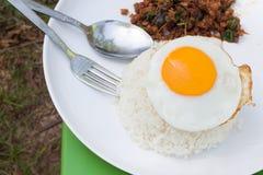 Stekt ägg och kryddig mat, Thailand mat Arkivfoton