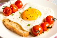 Stekt ägg på bröd och tomater Fotografering för Bildbyråer
