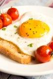 Stekt ägg på bröd och tomater Royaltyfri Foto