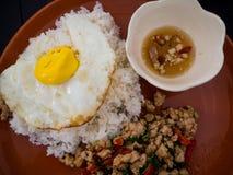 Stekt basilikahöna och stekt ägg med ris Royaltyfri Foto