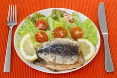Stekt filé av sardines med sallad Royaltyfria Bilder
