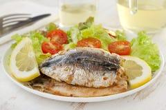 Stekt filé av sardines med sallad och wine Royaltyfri Foto