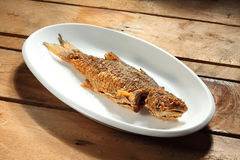 stekt fisk Arkivfoton