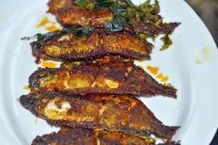 stekt fisk Royaltyfria Bilder