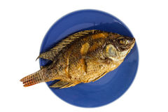 stekt fisk Arkivfoto