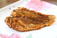 Stekt fisk för lunch Arkivbild