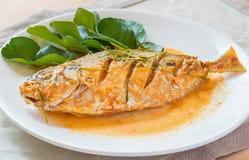 Stekt fisk i kryddig currysås Arkivbild