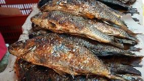 Stekt fisk på marknaden Royaltyfri Fotografi