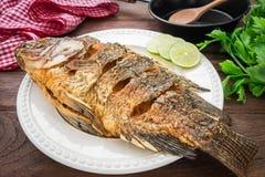 Stekt fisk på plattan med grönsaker och pannan Arkivfoto