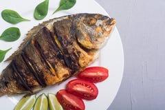 Stekt fiskdorado med limefrukt, tomater och spenat royaltyfri bild