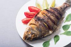 Stekt fiskdorado med limefrukt, tomater och spenat grillat hav för fiskmatparsley platta royaltyfri bild