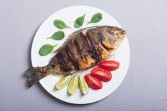 Stekt fiskdorado med limefrukttomater och spenat Bakgrund för havsmat arkivbilder