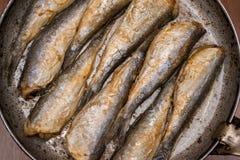 Stekt fisksill, stekt fisk i en stekpanna Royaltyfri Fotografi