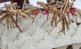 Stekt grashopper på matmarknaden Arkivbild