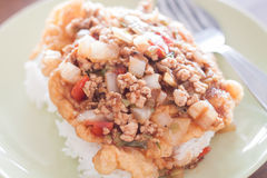 Stekt griskött med toppning för tomatsås på det stekte ägget Fotografering för Bildbyråer