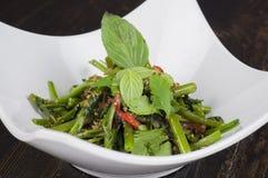 Stekt kryddig grönsak Royaltyfri Foto