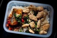 Stekt kyckling med basilika tjänade som med den på burk fisken på ris fotografering för bildbyråer