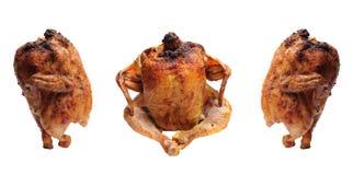 Stekt kyckling med en guld- frasig skorpa Royaltyfria Bilder