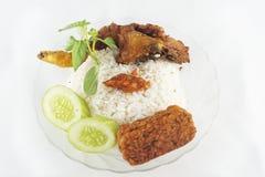 Stekt kyckling och ris i isolerad backkground Royaltyfri Fotografi