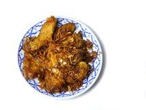 Stekt kyckling och stekt lök på plattan Royaltyfri Foto