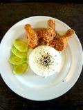Stekt kyckling och thai ris Royaltyfria Bilder