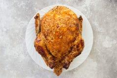 Stekt kyckling p? en vit platta L?ngsamt laga mat, lantg?rd, recept royaltyfri bild