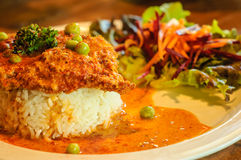 Stekt kycklingcurry med ris royaltyfria foton