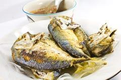 stekt mackerel Royaltyfri Fotografi