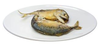 Stekt Mackerel Arkivfoto
