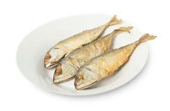 stekt mackerel Royaltyfria Foton